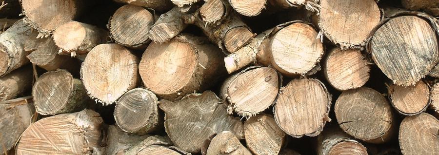 madera-sostenible-begreen