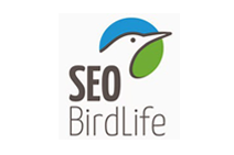 be green y seo birdlife